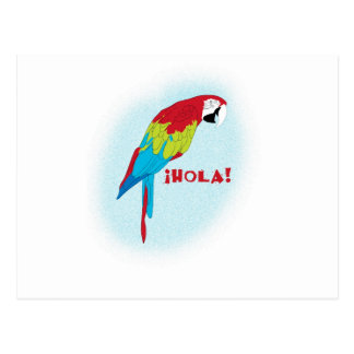 hola parrot postcard