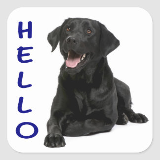 Hola pegatina negro del perro de perrito del pegatina cuadrada