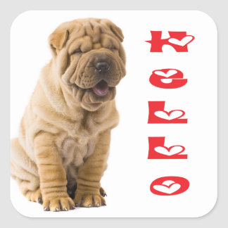 Hola pegatina/sellos del perro de perrito de Shar Pegatina Cuadrada