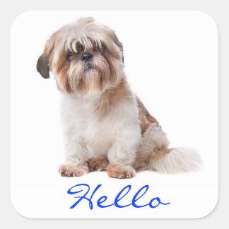 Hola pegatinas blancos del saludo del perro de calcomanías cuadradases