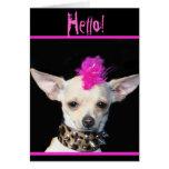 Hola tarjeta de felicitación punky de la chihuahua