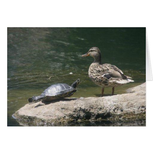 Hola tarjeta del pato