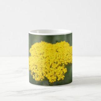 Hola taza amarilla de la flor
