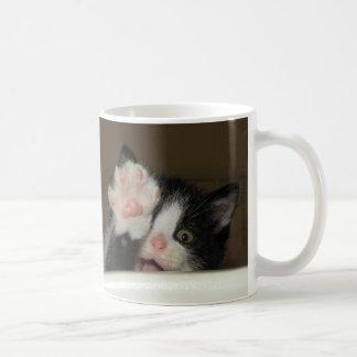 """""""Hola!"""" taza del gatito"""