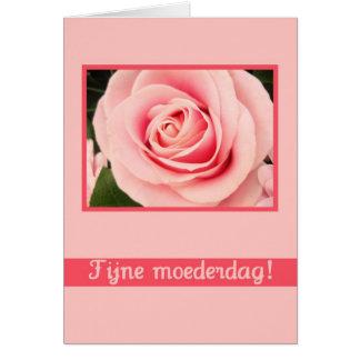 holandés subió rosado de la tarjeta de felicitació