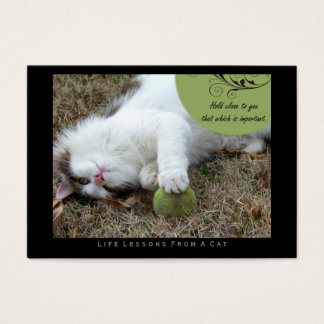 Hold Close Life Lessons from a Cat ACEO Art Cards