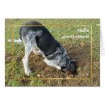Hole digging hound card