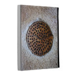 Hole in the wall bizarre rusted metal object iPad folio covers