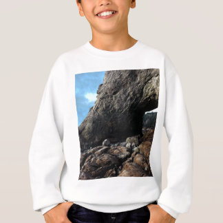 Hole-in-The-Wall Olympic National Park Sweatshirt