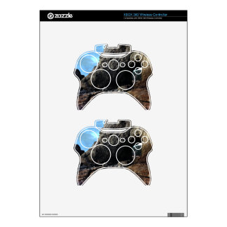 Hole-in-The-Wall Olympic National Park Xbox 360 Controller Skins