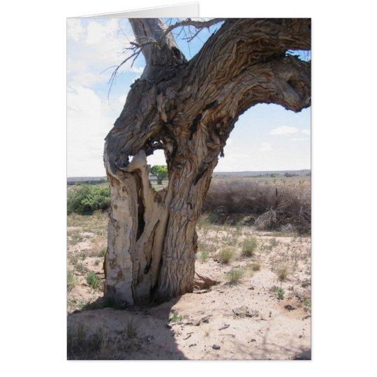 hole inthe tree card