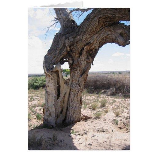 hole inthe tree greeting card