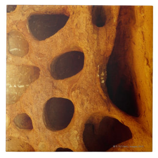 Holes in rock ceramic tile