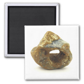 Holey Stone 2 Inch Square Magnet