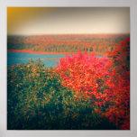 Holga Fall Colors Print