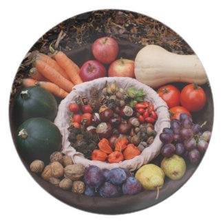 Holiday Assortment Merry Christmas Design Melamine Plate