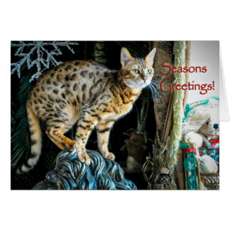 Holiday Bengal Cat Greeting Card