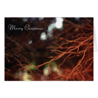 Holiday Branches Card