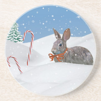 Holiday Bunny Rabbit in the Snow Coaster