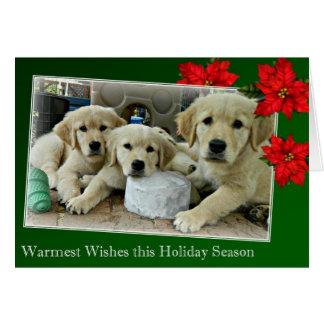 Holiday Card 11