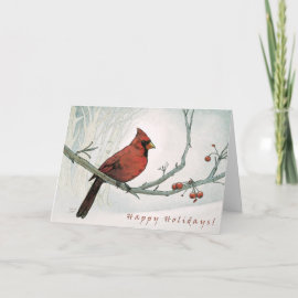 Holiday Cardinal Greeting Card card