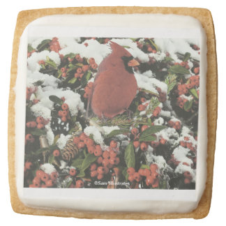 Holiday Cardinal Icing Shortbread Cookies