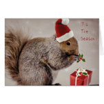 Holiday Cards for Nature Lovers