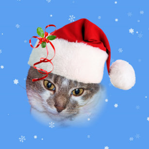 Holiday Cat In Santa Hat Wrapping Paper