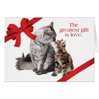 Holiday Cats Card