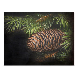 Holiday Chalk Drawn Pinecone and Pine Needles Postcard
