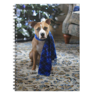 Holiday Cheer from Pit Bull Rescue Dog Notebooks