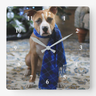 Holiday Cheer from Pit Bull Rescue Dog Square Wall Clock