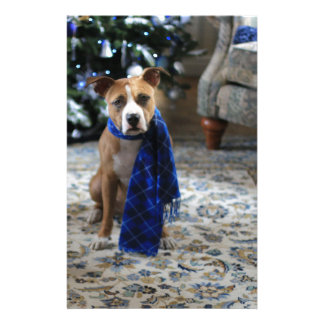 Holiday Cheer from Pit Bull Rescue Dog Stationery