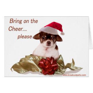 Holiday Chihuahua Christmas Card