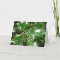 Holiday Christmas Card - Fresh Green Holly