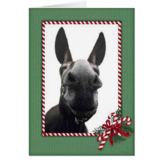 Holiday Cody Stationery Note Card