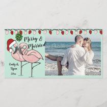 Holiday Flamingos and Lights