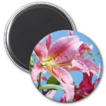 Holiday gifts Friends Pink Lily Flowers Floral 2 Inch Round Magnet