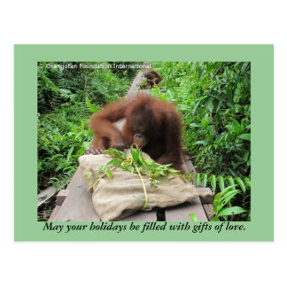 Holiday Gifts Jungle Style for Orangutans Postcards