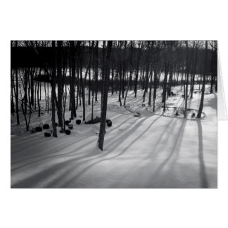 Holiday Greeting Card – Snowy Woods