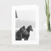 Holiday Greeting Snow Horses Xmas Equine Christmas
