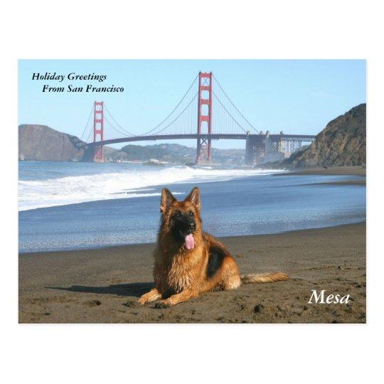 Holiday Greetings from San Francisco Postcard