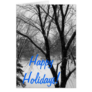 Holiday Greetings Greeting Cards