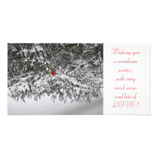 Holiday Greetings Personalized Photo Card