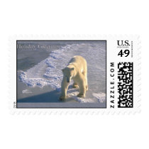 Holiday Greetings - Polar Bear Postage