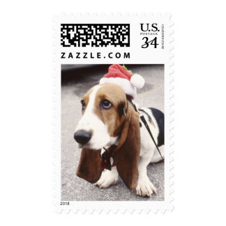 Holiday Greetings Post Card Rate Postage