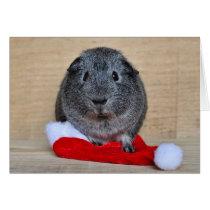 Holiday Guinea Pig Card