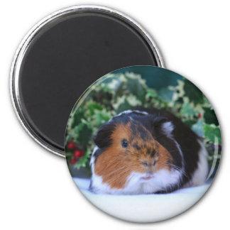 Holiday Guinea Pig Magnet