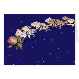 Holiday Hamsters Cards