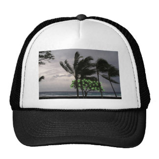 Holiday Lights on Palm Trees Hat